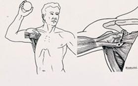 Differentes-techniques-operatoires